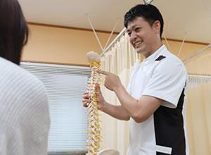 骨模型を持つ施術者
